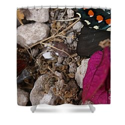 Shower Curtain featuring the photograph Windrow by Brian Boyle