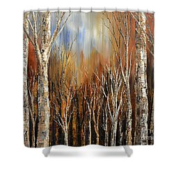 Winds Of Autumn Shower Curtain