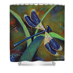 Winds Of Change Shower Curtain by Tracy L Teeter