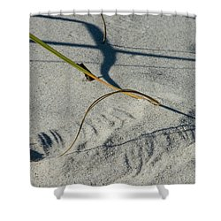Winds Sand Scapes Shower Curtain