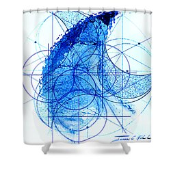 Windstorm Shower Curtain by James Christopher Hill