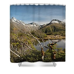 Shower Curtain featuring the photograph Windswept Branches On Key Summit by Gary Eason