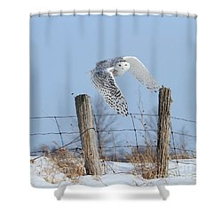 Windswept Glory Shower Curtain