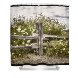 Windswept Shower Curtain by Joan Carroll
