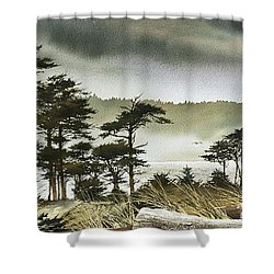 Windswept Shore Shower Curtain by James Williamson