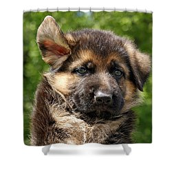 Windy Day Shower Curtain by Sandy Keeton