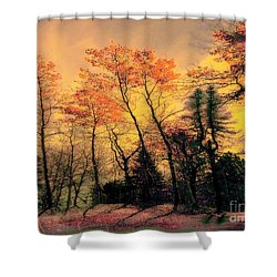 Shower Curtain featuring the photograph Windy  by Elfriede Fulda