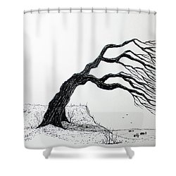 Windy Guide Shower Curtain