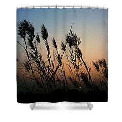 Windy Sunset Shower Curtain