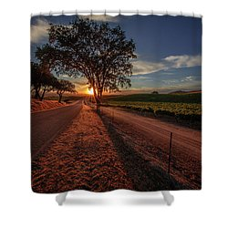 Wine Country Evening Shower Curtain