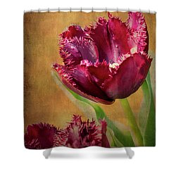 Wine Dark Tulips From My Garden Shower Curtain