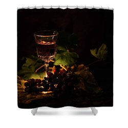 Wine Glass And Grapes Shower Curtain