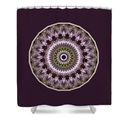 Wine Roses And Thorns Shower Curtain