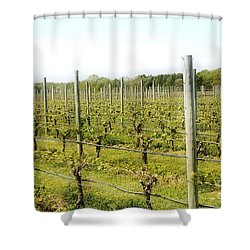 Wineries, Long Island, Ny Shower Curtain
