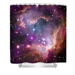 Wing Of The Small Magellanic Cloud Shower Curtain