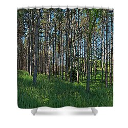 Wingate Prairie Veteran Acres Park Pines Crystal Lake Il Shower Curtain