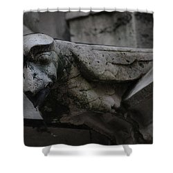 Winged Gargoyle Shower Curtain