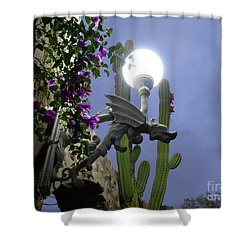 Winged Gargoyle In El Fuerte Shower Curtain