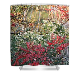 Winged Sumac Shower Curtain
