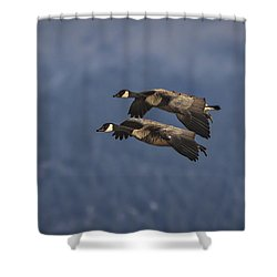 Shower Curtain featuring the photograph Wingman  by Mitch Shindelbower