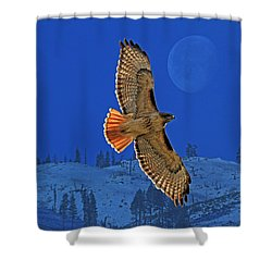 Wings Shower Curtain by Donna Kennedy