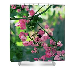 Shower Curtain featuring the photograph Wings by Megan Dirsa-DuBois