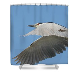 Wings Of Fancy Shower Curtain by Fraida Gutovich