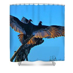 Wings Of Gold Shower Curtain by Kimo Fernandez