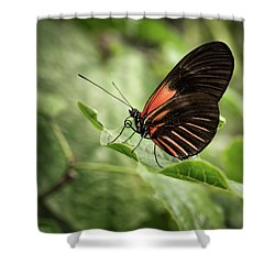 Wings Of The Tropics Butterfly Shower Curtain