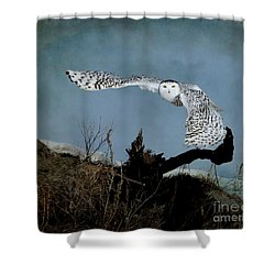 Wings Of Winter Shower Curtain