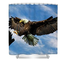 Wings Outstretched Shower Curtain