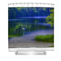 Wings Shower Curtain by R Thomas Berner