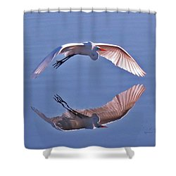 Wingtips Shower Curtain
