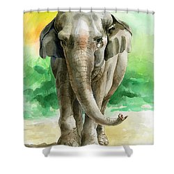 Winky Shower Curtain