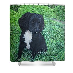 Shower Curtain featuring the painting Winnie by Tom Roderick