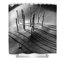 Winter 5 Shower Curtain