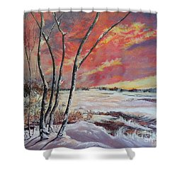 Winter Across The Lake  Shower Curtain