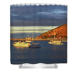 Shower Curtain featuring the photograph Winter Afternoon Sun At Friendly Bay by Nareeta Martin