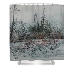 Winter, Alberta Shower Curtain