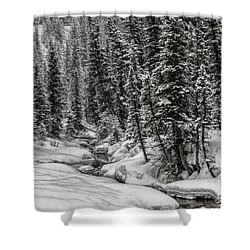 Winter Alpine Creek II Shower Curtain