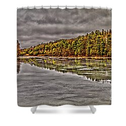 Winter At Pine Lake Shower Curtain