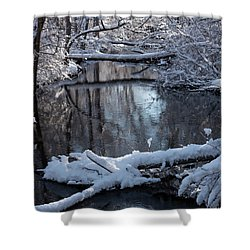 Winter At The Brook Shower Curtain