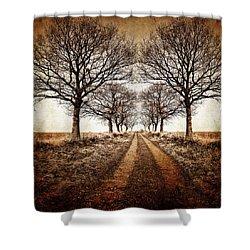 Winter Avenue Shower Curtain by Meirion Matthias