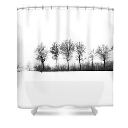 Winter Bareness Shower Curtain by Silvia Ganora