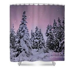Winter Beauty Shower Curtain by Sheila Ping