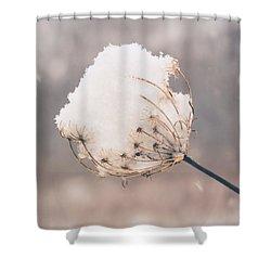 Shower Curtain featuring the photograph Winter Beauty by Viviana  Nadowski