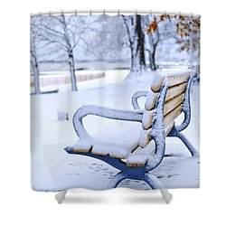 Winter Bench Shower Curtain by Elena Elisseeva