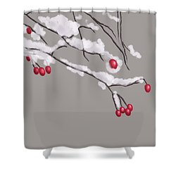 Winter Berries And Branches Covered In Snow Shower Curtain