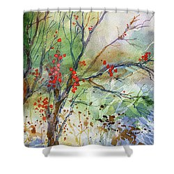 Winter Berries Shower Curtain
