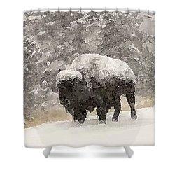 Winter Bison Shower Curtain